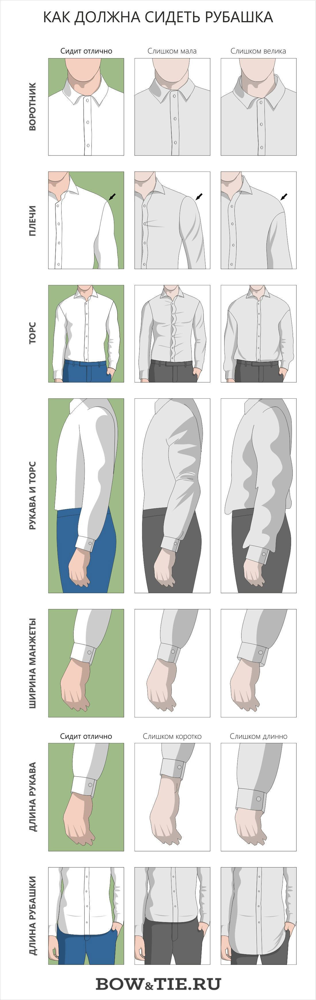 Как должна сидеть рубашка инфографика