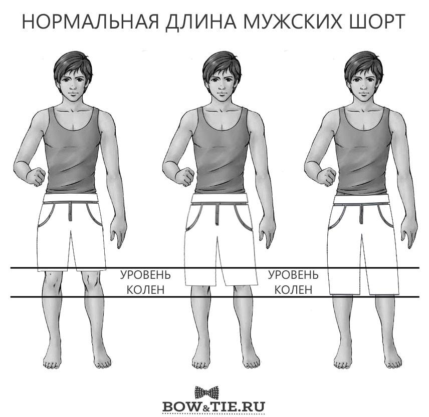 Мужские шорты - нормальна длина