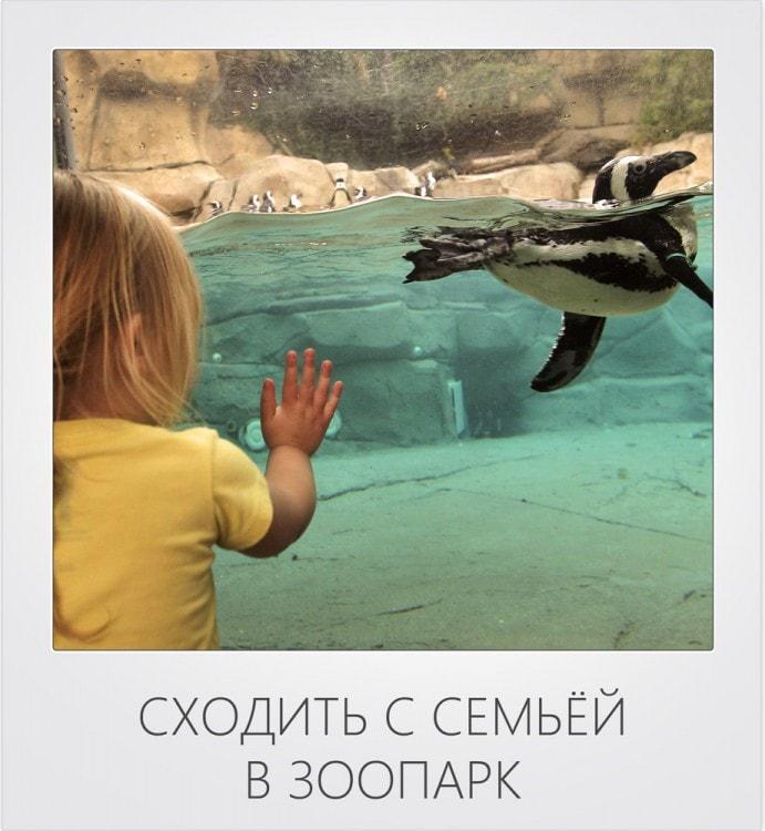 Сходить с семьей в зоопарк