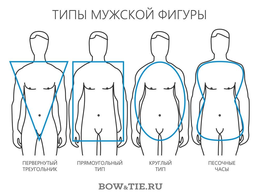 Типы мужской фигуры