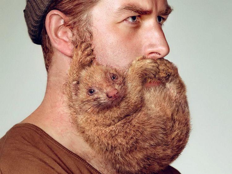 Триммер поможет смоделировать любую форму бороды, по вашему желанию