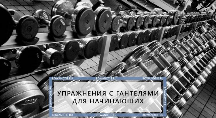 Упражнения с гантелями для начинающих