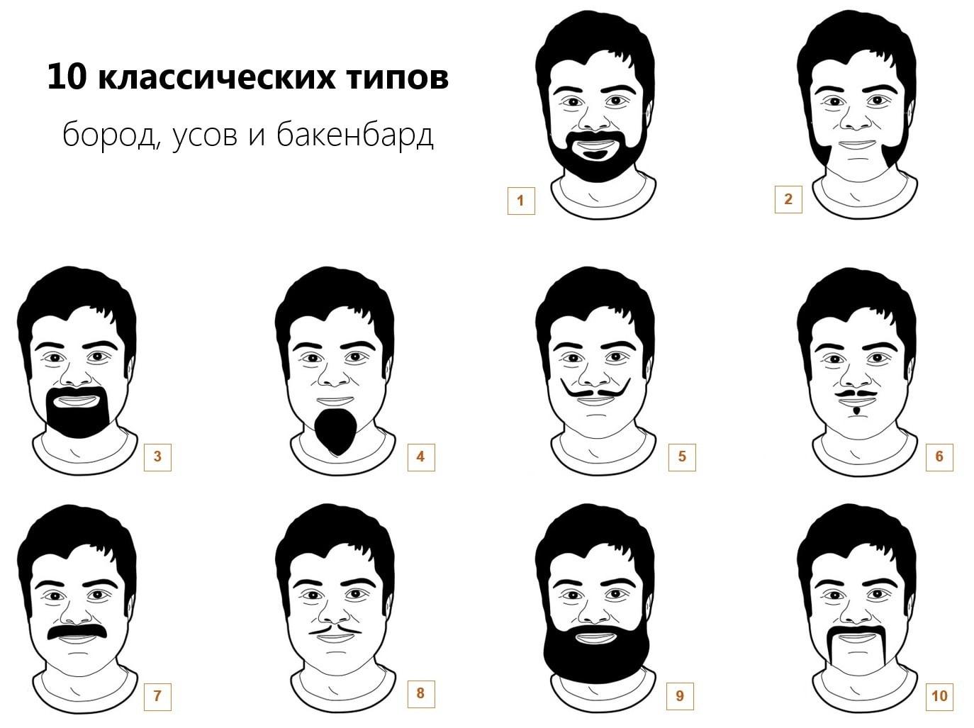 Как отрастить бороду, классические типы бороды