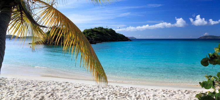 Первая перегонка рома была в тропических местах Карибского бассейна