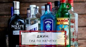 Джин гид по напитку